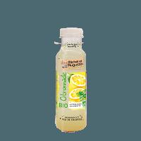 citronnade-michel-et-augustin-33-cl-bio